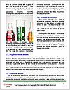0000091898 Word Template - Page 4