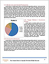 0000091913 Word Template - Page 7
