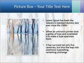 Winter PowerPoint Template - Slide 13