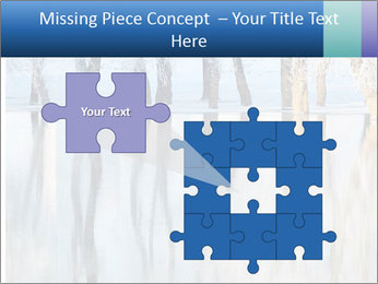 Winter PowerPoint Template - Slide 45