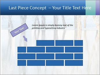 Winter PowerPoint Template - Slide 46