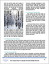 0000091916 Word Templates - Page 4