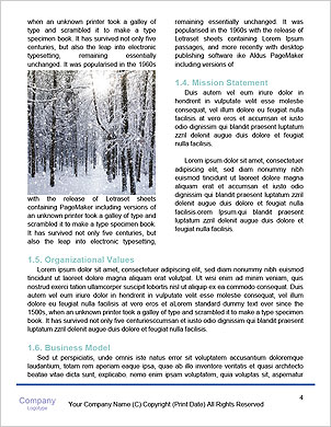 0000091916 Word Template - Page 4