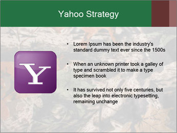 Camouflage PowerPoint Template - Slide 11