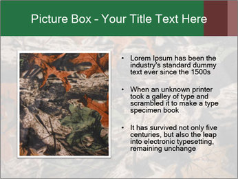 Camouflage PowerPoint Template - Slide 13