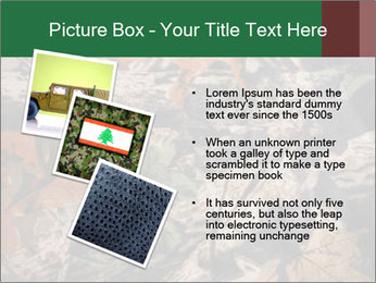Camouflage PowerPoint Template - Slide 17