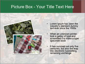 Camouflage PowerPoint Template - Slide 20