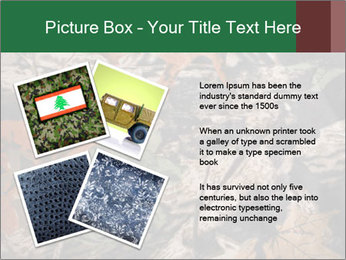 Camouflage PowerPoint Template - Slide 23