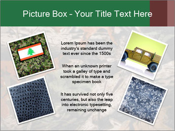 Camouflage PowerPoint Template - Slide 24