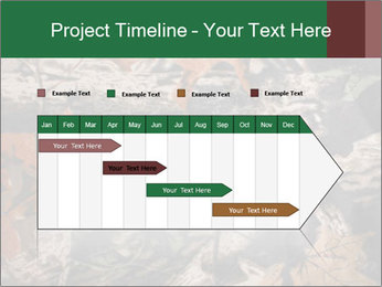 Camouflage PowerPoint Template - Slide 25