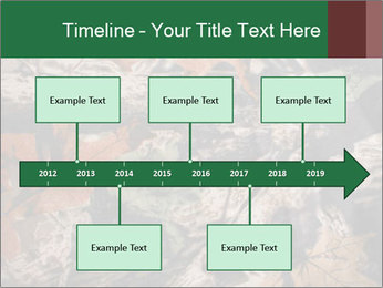 Camouflage PowerPoint Template - Slide 28