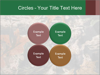 Camouflage PowerPoint Template - Slide 38