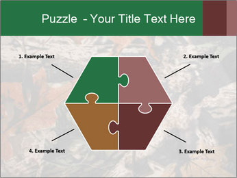 Camouflage PowerPoint Template - Slide 40