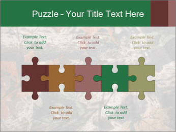 Camouflage PowerPoint Template - Slide 41