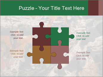 Camouflage PowerPoint Template - Slide 43