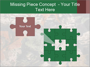 Camouflage PowerPoint Template - Slide 45