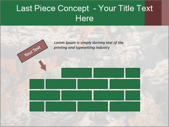 Camouflage PowerPoint Template - Slide 46