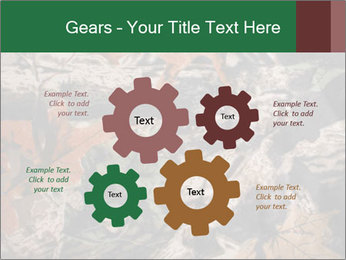 Camouflage PowerPoint Template - Slide 47