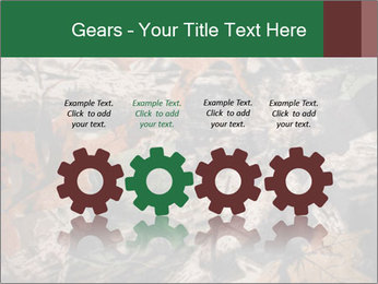 Camouflage PowerPoint Template - Slide 48