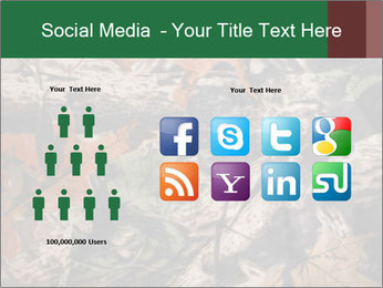 Camouflage PowerPoint Template - Slide 5