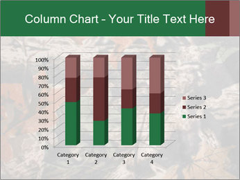 Camouflage PowerPoint Template - Slide 50