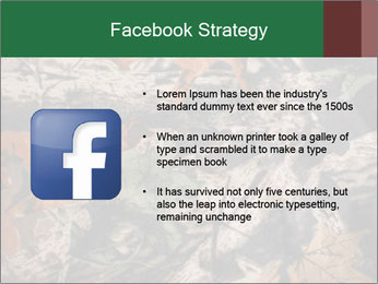 Camouflage PowerPoint Template - Slide 6