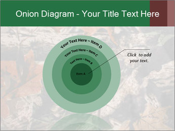 Camouflage PowerPoint Template - Slide 61