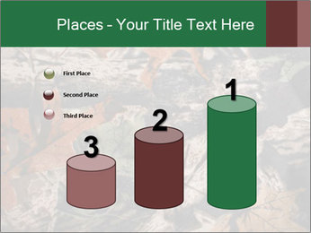 Camouflage PowerPoint Template - Slide 65