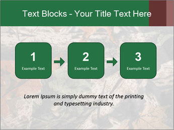 Camouflage PowerPoint Template - Slide 71