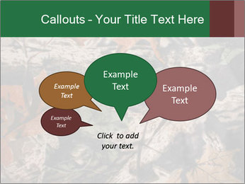 Camouflage PowerPoint Template - Slide 73