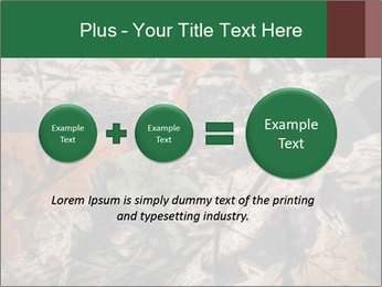 Camouflage PowerPoint Template - Slide 75