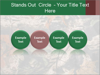 Camouflage PowerPoint Template - Slide 76