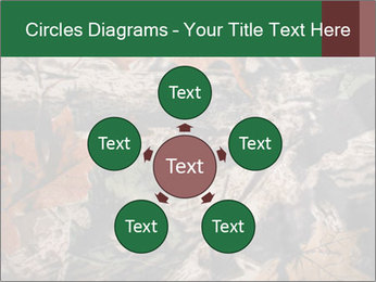 Camouflage PowerPoint Template - Slide 78