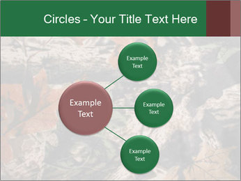 Camouflage PowerPoint Template - Slide 79