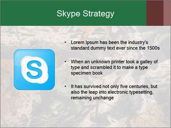 Camouflage PowerPoint Template - Slide 8