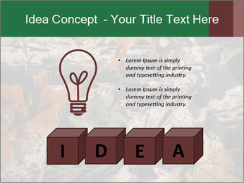 Camouflage PowerPoint Template - Slide 80