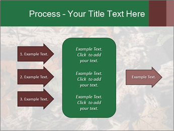 Camouflage PowerPoint Template - Slide 85