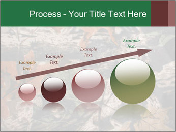 Camouflage PowerPoint Template - Slide 87