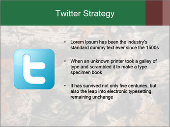 Camouflage PowerPoint Template - Slide 9