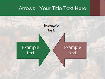 Camouflage PowerPoint Template - Slide 90