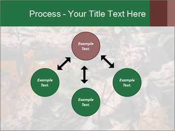 Camouflage PowerPoint Template - Slide 91