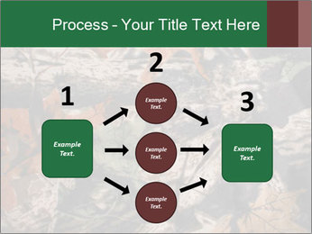 Camouflage PowerPoint Template - Slide 92