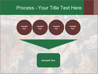 Camouflage PowerPoint Template - Slide 93