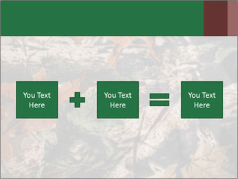 Camouflage PowerPoint Template - Slide 95