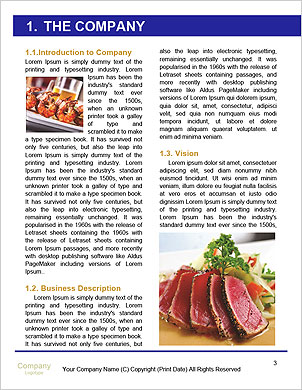0000091919 Word Template - Page 3