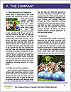 0000091924 Word Templates - Page 3