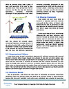 0000091939 Word Templates - Page 4