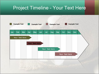 Spa PowerPoint Templates - Slide 25