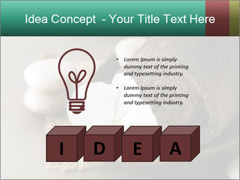 Spa PowerPoint Templates - Slide 80