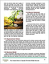 0000091944 Word Templates - Page 4
